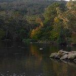 Billede af Lake Alexandra Reserve