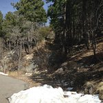 Be prepared for a dramatic change in temperature at the top of Mt. Lemmon