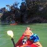 Foto de Kaiteriteri Kayaks
