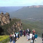 Billede af Blue Mountains Canyon and Wildlife Discovery Tour
