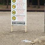 صورة فوتوغرافية لـ Odaiba Kaihin Koen (Odaiba Seaside Park)