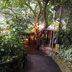 Photo of Yao Yue Tea Restaurant