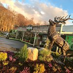 A warm highland welcome at Simpsons Garden Centre