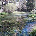 Photo de Monumento Natural De La Fuentona