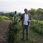 Here, Martin talks about the vineyards - his enthusiasm is infectious.
