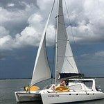 Sailing Kuma Too, Customized sailing charter based in Dunedin, Florida