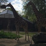 Photo of Dortmund Zoo