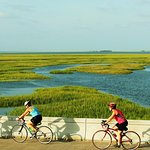 Foto di Charleston Bicycle Tours
