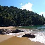 Foto de Cedro Beach
