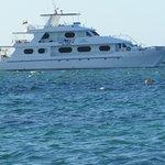 TipTop11 tour catamaran