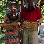SO we were bee keepers for a minute