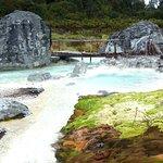Bild från Parque Natural de Purace