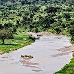 Roy Safaris Ltd. - Day Tours Foto
