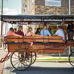 Guided Battlefield Carriage Tours Gettysburg PA