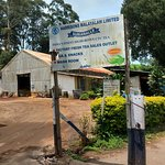 Foto de Kolukkumalai Tea Estate