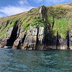 Bilde fra Dingle Dolphin Boat Tours