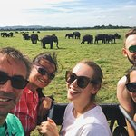Jeep experience in Elephant's resort