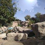 Al-Ain Zoo