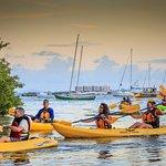 Night Kayaking Tour in the Bio Bay Reserve