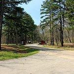 Hawn State Park Missouri 05 Host camp