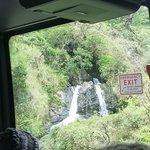 Road to Hana Tours의 사진