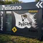 Pelicano照片