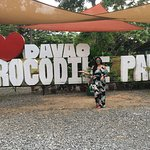 Photo de Crocodile Park