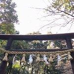 ภาพถ่ายของ Nonomiya Shrine