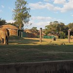 Photo of Johannesburg Zoo