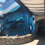 صورة فوتوغرافية لـ Adventure Beach Waterpark