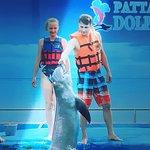 صورة فوتوغرافية لـ Pattaya Dolphin World