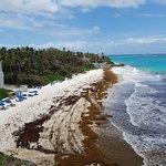 Crane Beach - top view from resort poolside