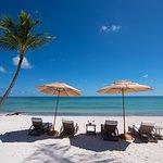 Beach Area, Tortuga Bay Puntacana Resort & Club.
