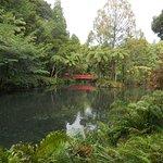 Foto de Parque Pukekura