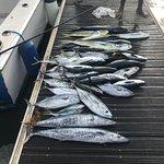 Last Friday's catch!!!!