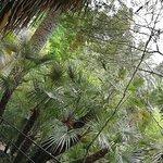 Photo of Jardin Botanique et Exotique Val Rahmeh
