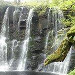 Photo of Glenariff Forest Park