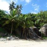 Foto de Phangan Jungle
