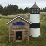 dog lighthouse