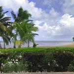 property shoreline