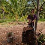 Tasting Fresh Coconuts