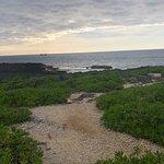 ภาพถ่ายของ Cape Zampa