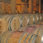 葡萄酒游览与品尝
