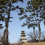 Gyeongju National Museum Foto