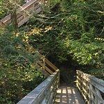 various levels of wooden bridge