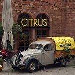 Photo of Citrus