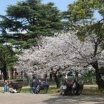 ภาพถ่ายของ Nagasaki Peace Park