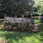 Foto Belle Meade Plantation