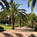 Photo of Parque De La Paloma