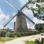 Bild från Island Safari Barbados